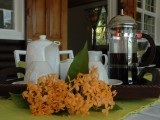 Enjoy breakfast under verandah, One Bedroom Chalet | Kokogrove Chalets | Mahe, Anse Royale, Seychelles
