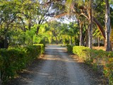 Entrance Driveway, Agnes Water 1770 Hotel Accommodation Retreat The Lovely Cottages